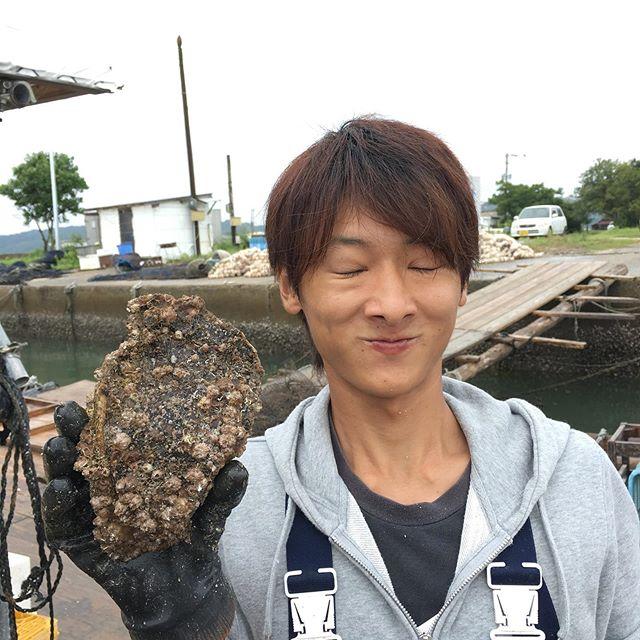 めっちゃデッカい岩牡蠣が水揚げされてます(笑)これを磨いて 殺菌して やっと 出荷できるわけです。スタッフ頑張ってます🤗何年もんやろ?聞くの忘れとったけど1キロくらいのデッカイのがゴロゴロしとった🤭今年は夏が短く今は毎日 雨だから真牡蠣もきっと 出来がいい!!!#糸島 #アクアグローバルフーズ #岩牡蠣 #岩牡蠣でかい #糸島牡蠣小屋 #オイスターバー#糸島サウンド #みるくがき #豊久丸