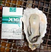 hikaku-thumb-203x209-19